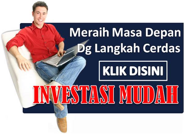 peluang bisnis untuk income ratusan juta